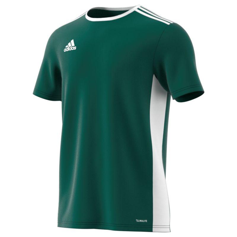 Adidas Match Jersey - Entrada 18 Collegiate Green White • RJM Sports 2d87960f3daea