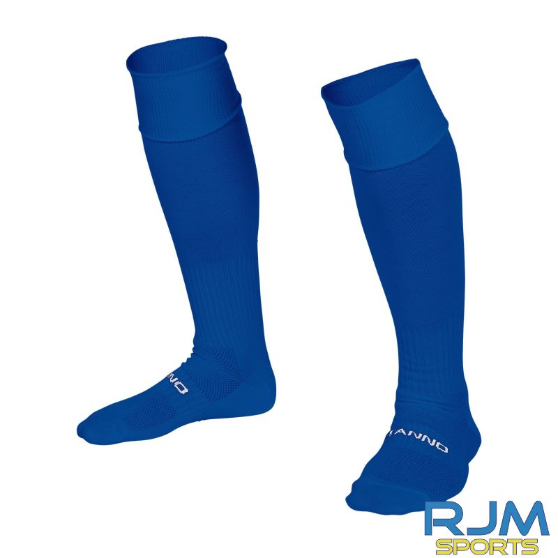 Steins Thistle Stanno Park Player Training Socks Royal