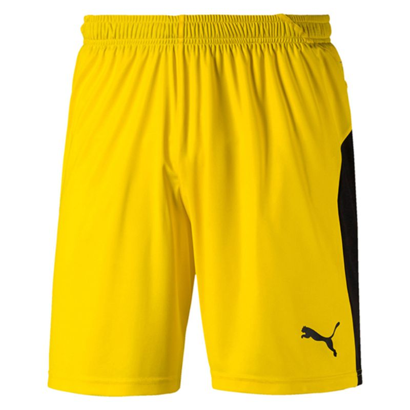 Puma Liga Goalkeeper Shorts