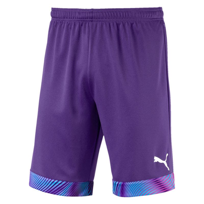 Puma Cup Goalkeeper Shorts