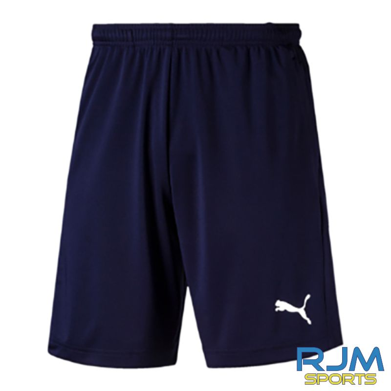 Riverside FC Coaches Puma Liga Training Shorts Peacoat