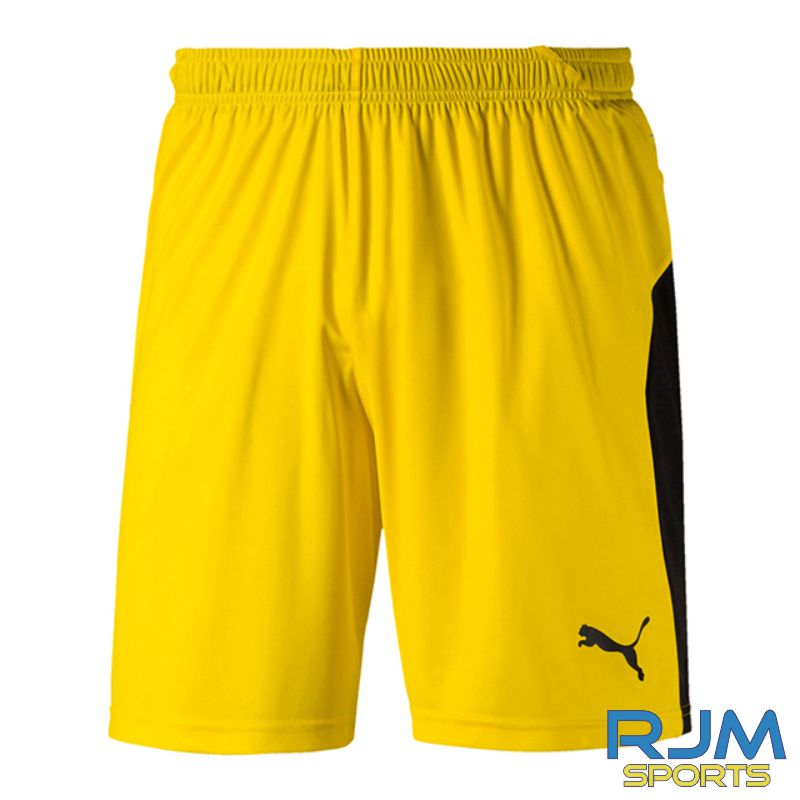 Riverside FC Puma Liga GK Shorts Cyber Yellow/Black