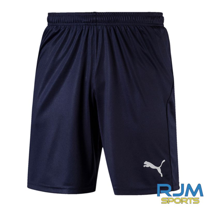 Riverside FC Puma Liga Core Shorts Peacoat