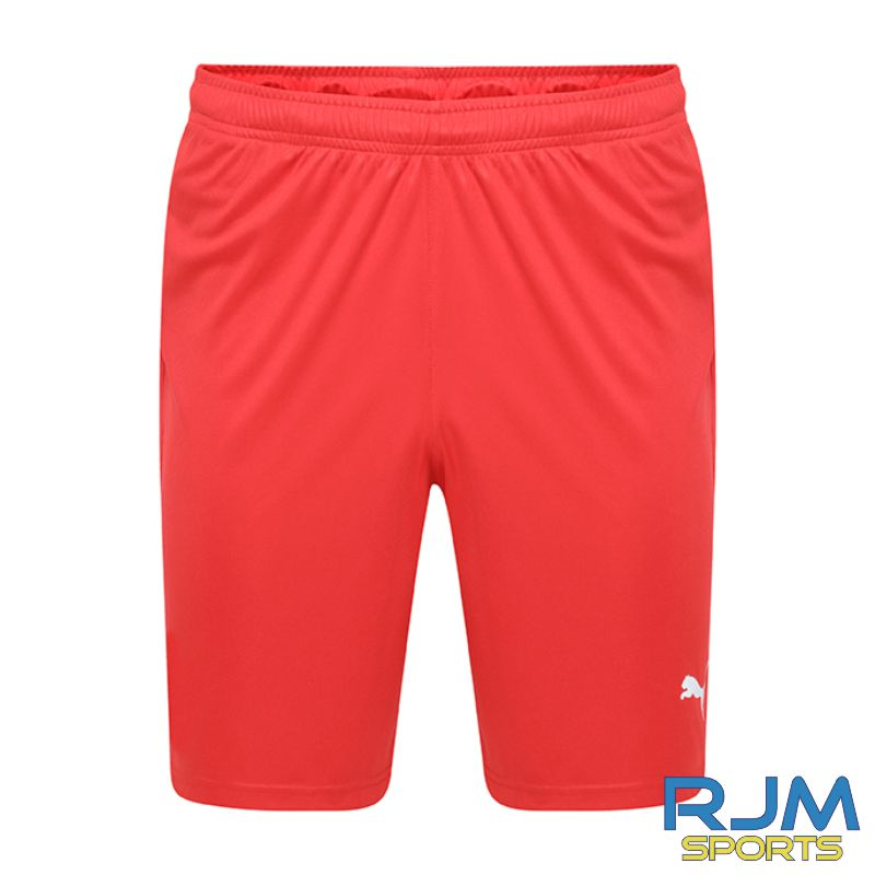 Dunipace FC Players Puma Liga Core Shorts Red