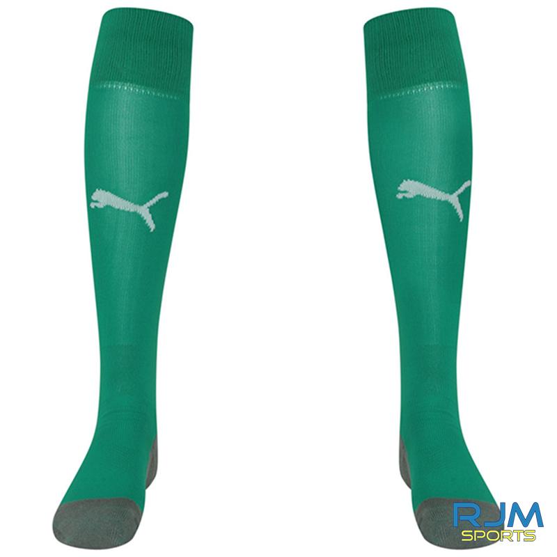 Stenhousemuir FC Puma Liga Core 2021/22 GK Socks Pepper Green